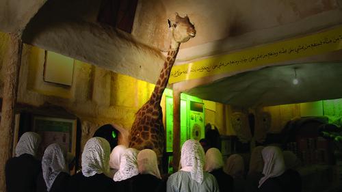 Als de giraffes komen