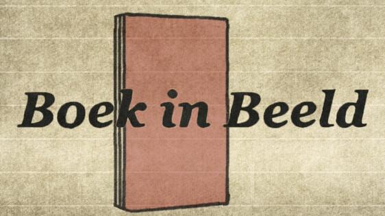 Boek in beeld