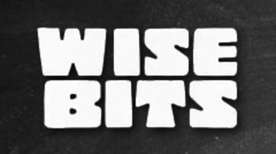 Wisebits
