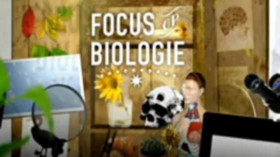 Focus op biologie
