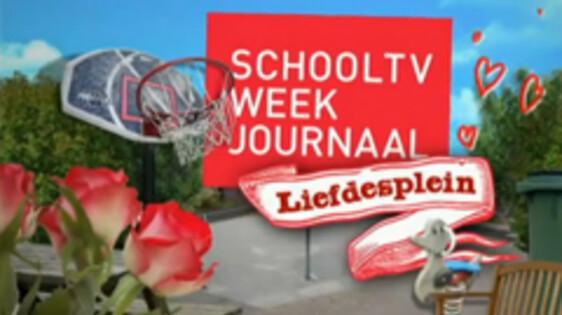 schooltv: programma - liefdesplein