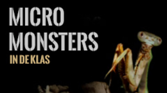 Micro Monsters in de klas