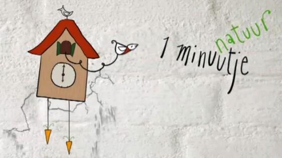 1 Minuutje Natuur