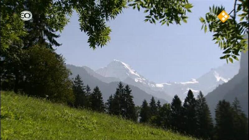 Zwitserland Brunigbahn: Interlaken - Luzern