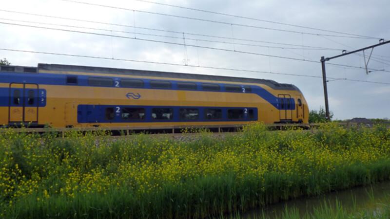Nederland: Amsterdam - Haarlem - Rotterdam