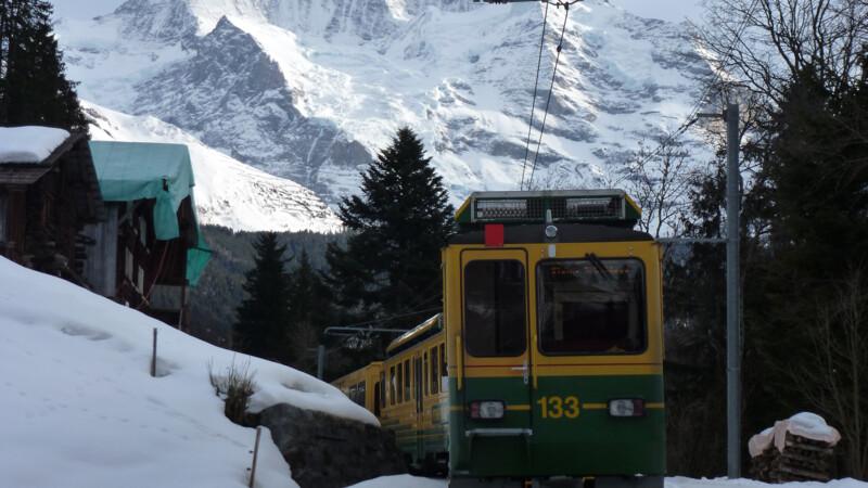 Zwitserland: Grindelwald - Kleine Scheidegg - Jungfraujoch
