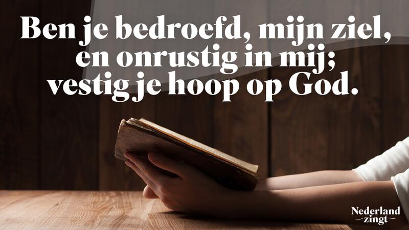 Nederland Zingt lied delen: Zoals een hinde