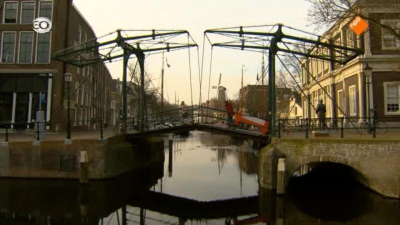 Schiedam (donderdag)
