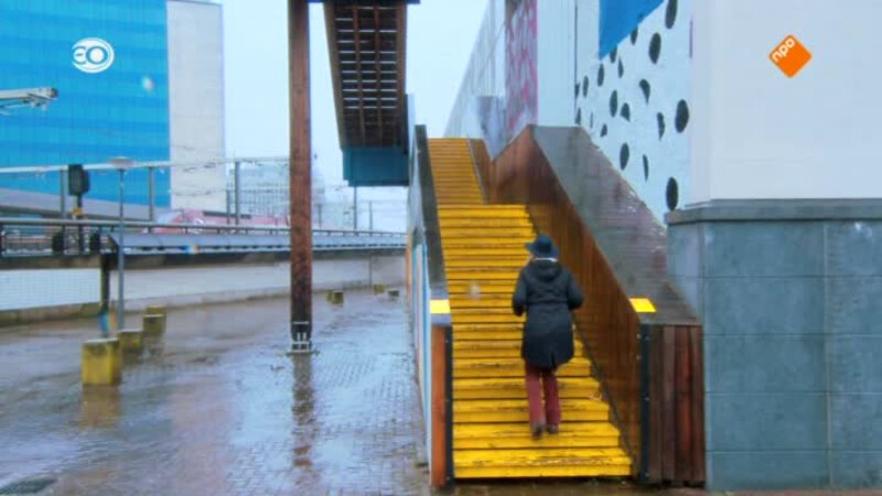 Rotterdam Oude Noorden (maandag)