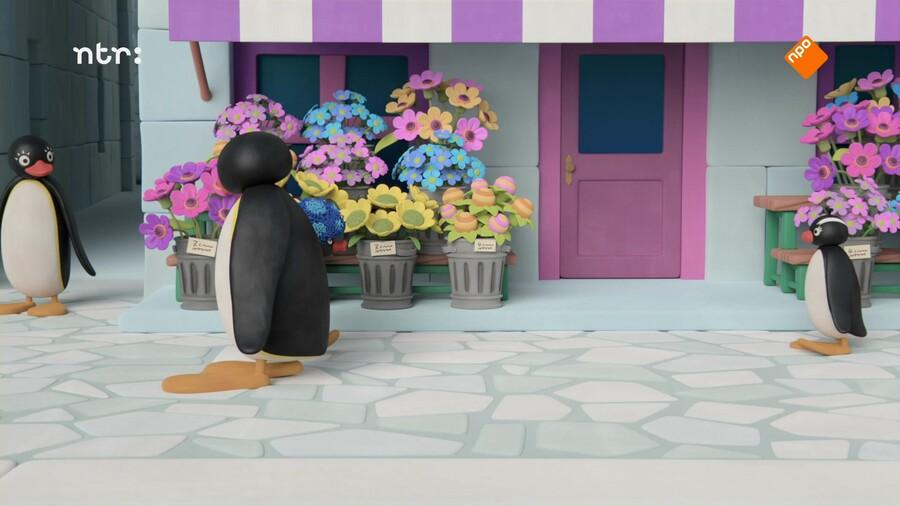 Pingu in de stad