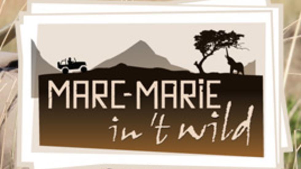 Marc-marie In 't Wild - Nijlpaard