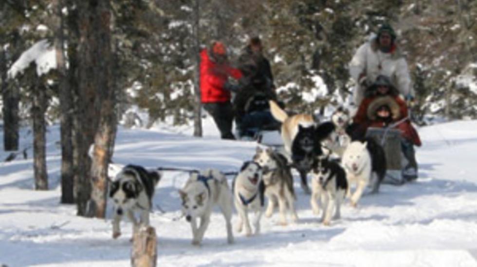 Surviving Nature: Ijsberen & Inuit - Aflevering 2