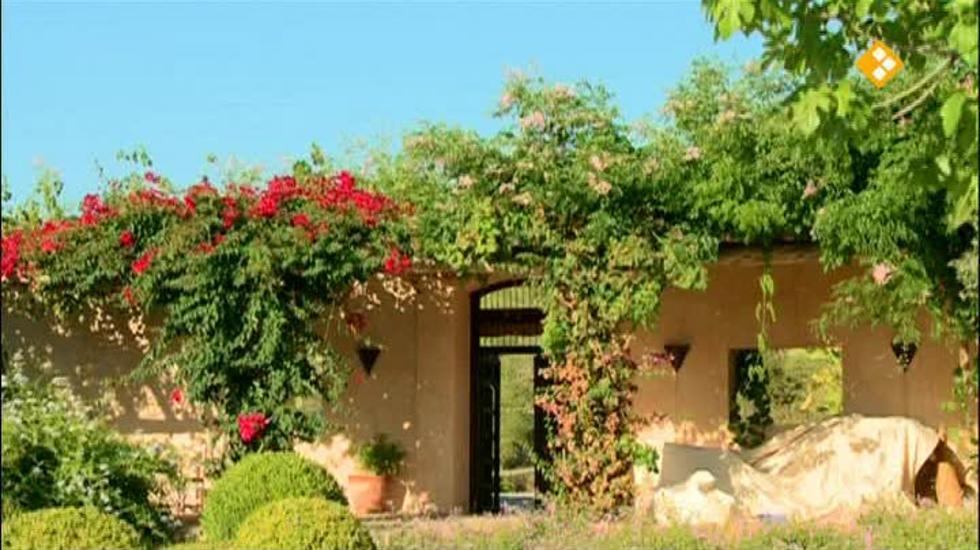 House Ibiza - House Ibiza