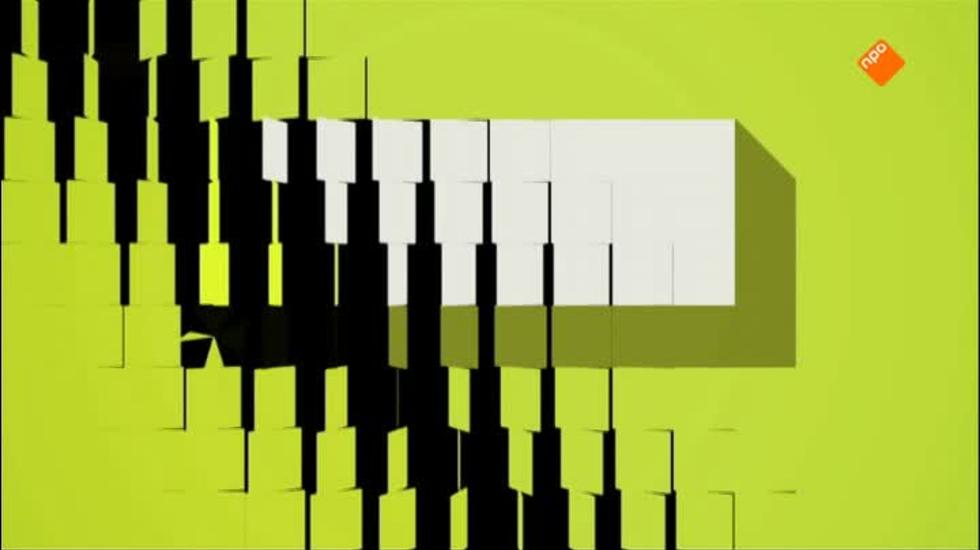 Je Zal Het Maar Zijn - De Wallen Anno 2012