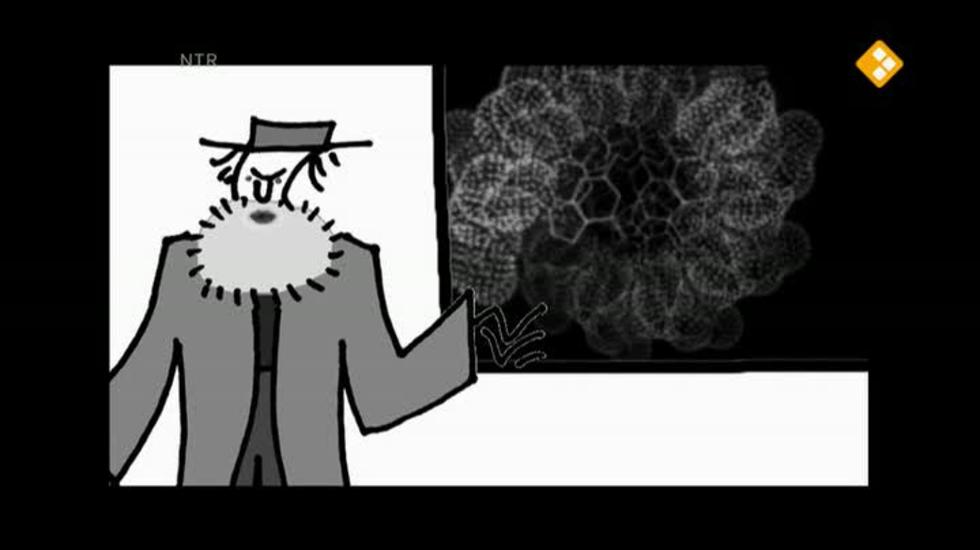 Bio-bits - Argumenten Voor Evolutie