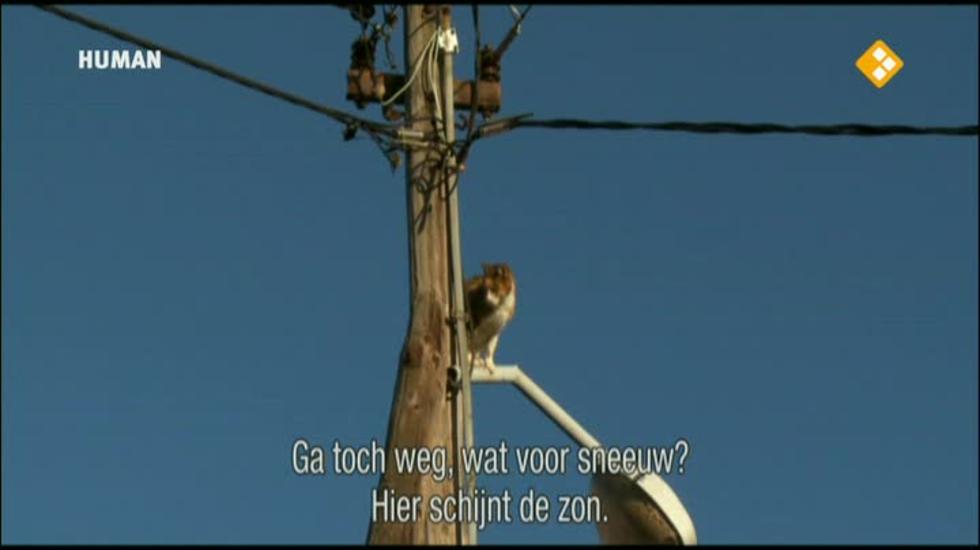 Filmlab - Winterslaap In Lukomir