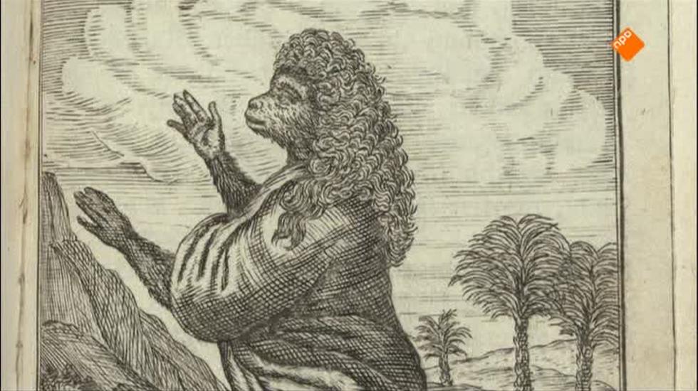 Literatuurgeschiedenis - Dromen 1700-1750