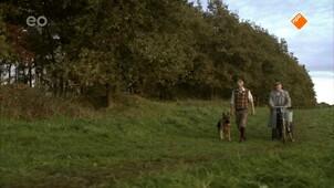Snuf, de hond